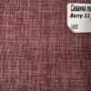 Berry-11
