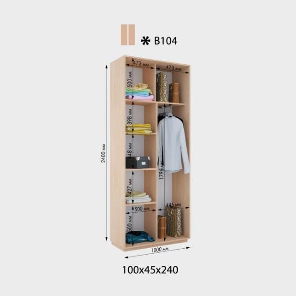 2-х дверный шкаф-купе Виват В104 (100x45x240)