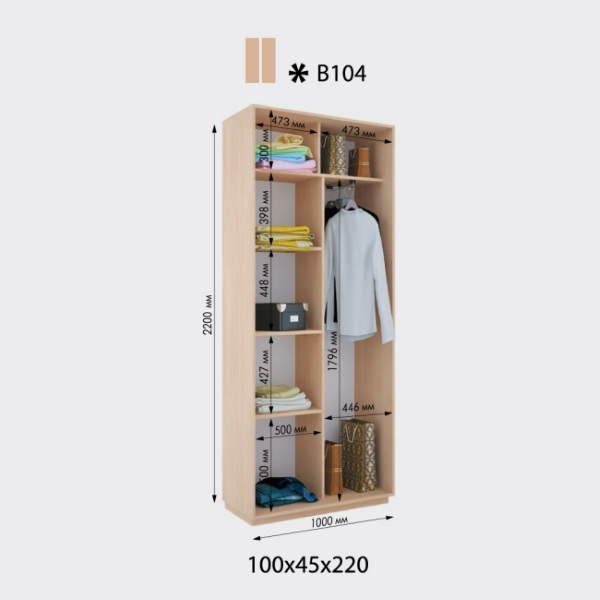 2-х дверный шкаф-купе Виват В104 (100x45x220)