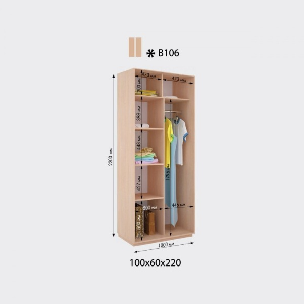2-х дверный шкаф-купе Виват В106 (100x60x220)