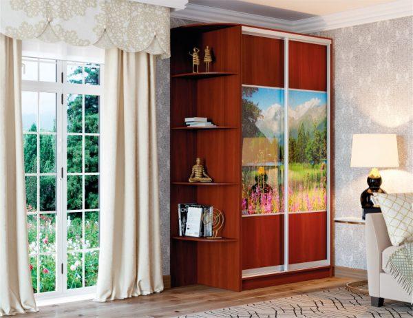Двухдверный шкаф купе цвет яблоня локарно, фасады комбинированные дсп/фотопечать, система серебро