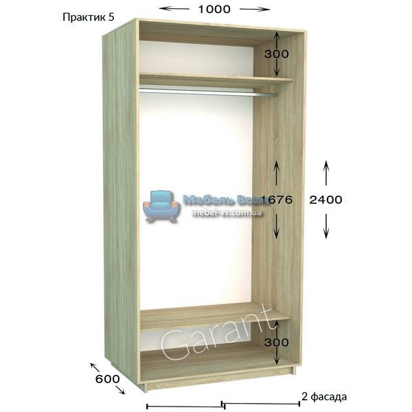 Двухдверный шкаф купе Практик 5 (100x45/60x220/240)
