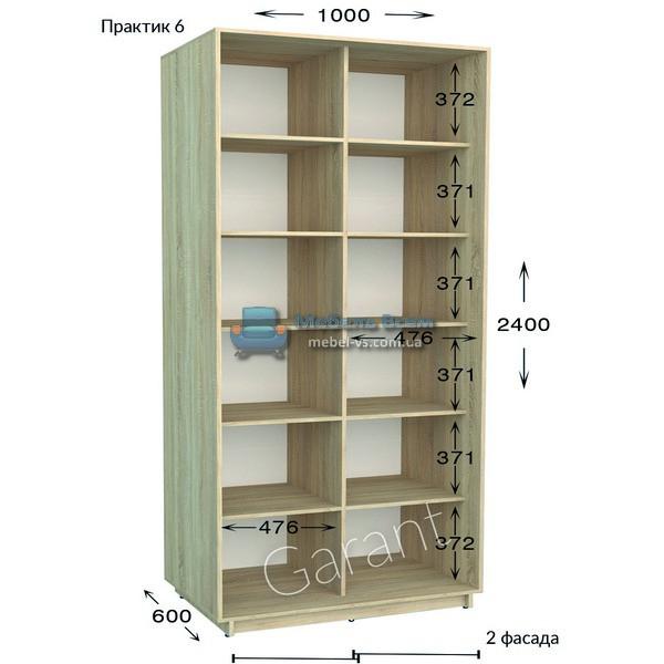 Двухдверный шкаф купе Практик 6 (100x45/60x220/240)