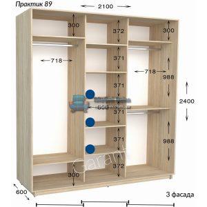 Трёхдверный шкаф купе Практик 89 (210×45/60×220/240)